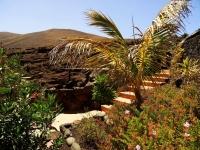 Garten von Ferienhaus Castillo IV