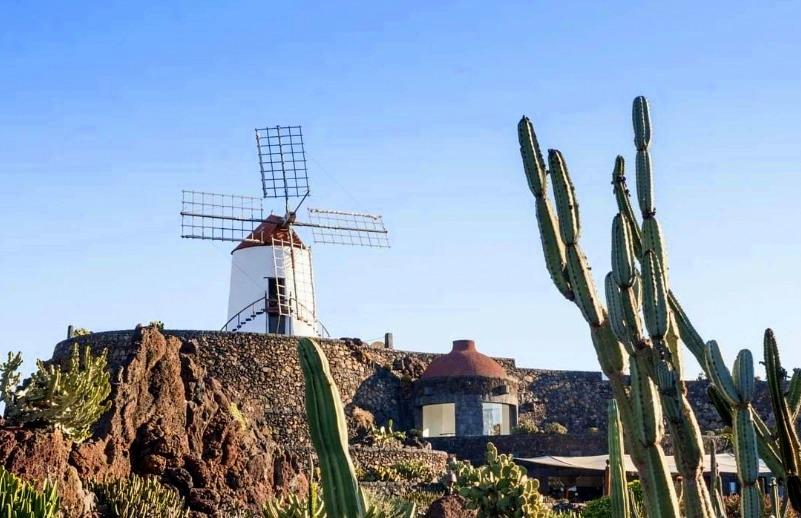 Kaktusgarten - Jardín_de_Cactus Maismühle