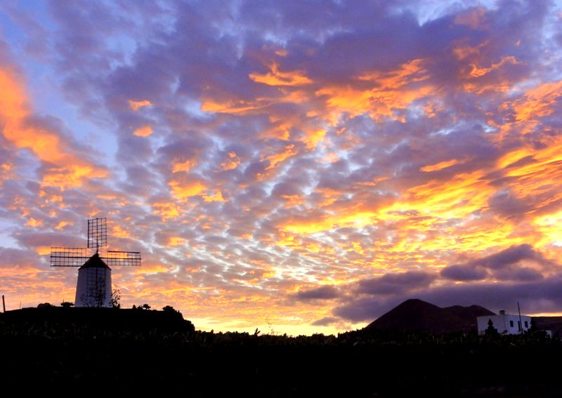 Sonnenuntergang hinter dem Kaktusgarten